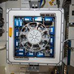Bioreactor Express Service, nuova opportunità tutta italiana per gli esprimenti sulla ISS
