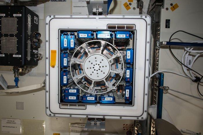 ASI - Bioreactor Express Service, nuova opportunità tutta italiana per gli esprimenti sulla ISS